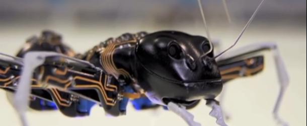 3d printed ant