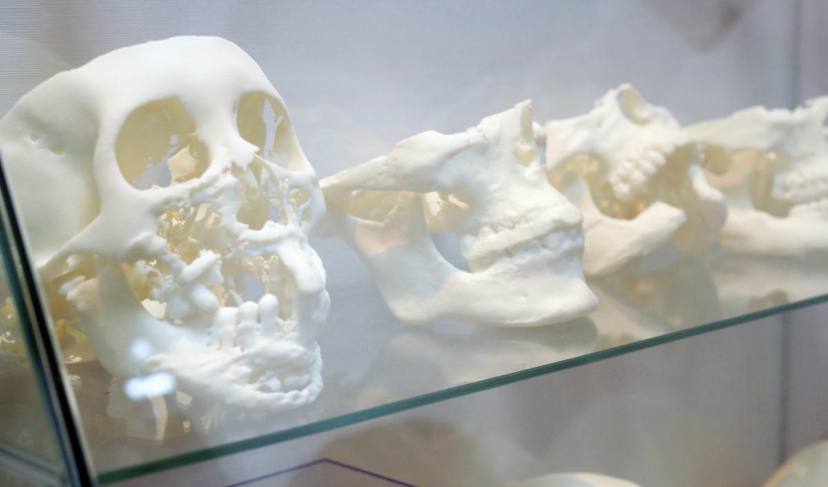 DETEKT 3D printers in Taiwan 3D printed skulls
