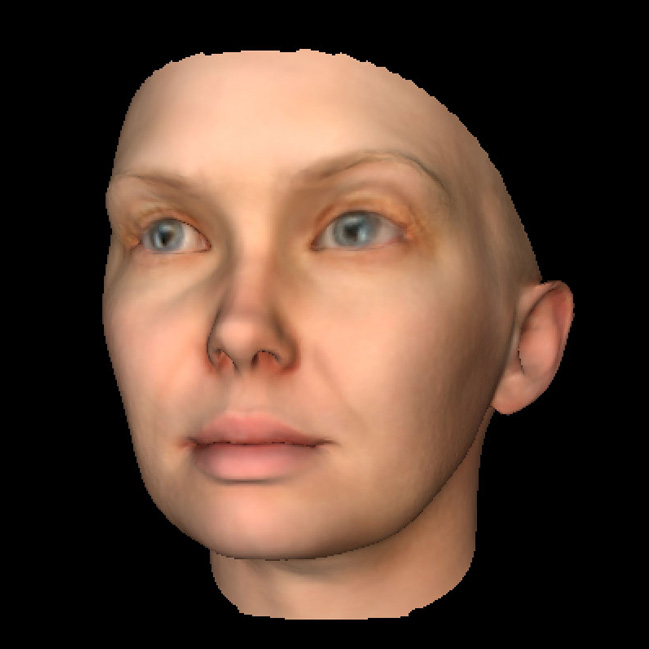 feature Heather Dewey-Hagborg DNA face models for 3D printing Chelsea Manning's face