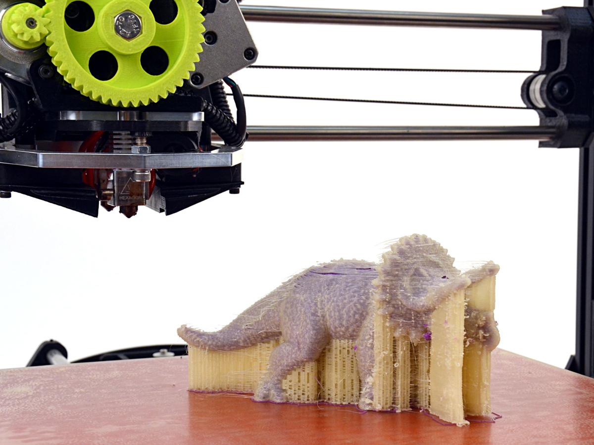 lulzbot dual head 3D printer