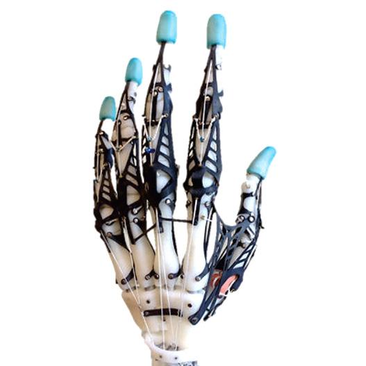 3D printed biomimetic hand