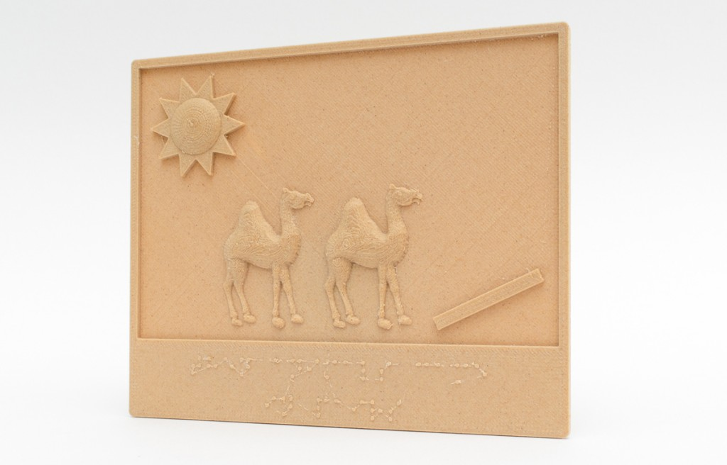 Tactile Picture Books Project 3D printed books blind one page with camel
