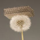 This Might Be the Strongest AND Lightest Material Ever Seen in 3D Printing