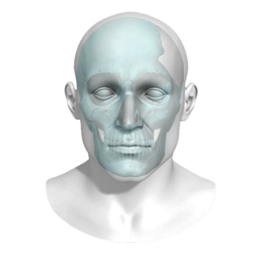 FDA Approves 3D Printed Titanium Craniofacial Implants