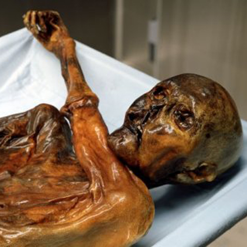 otzi the iceman to be 3D printed