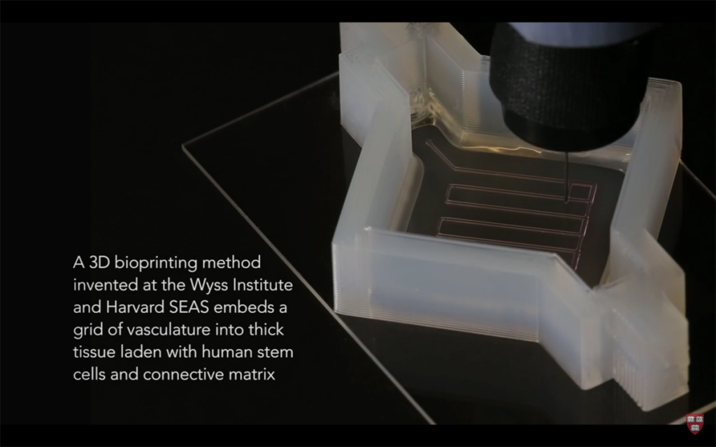 3D printed vasculature and tissue from Harvard