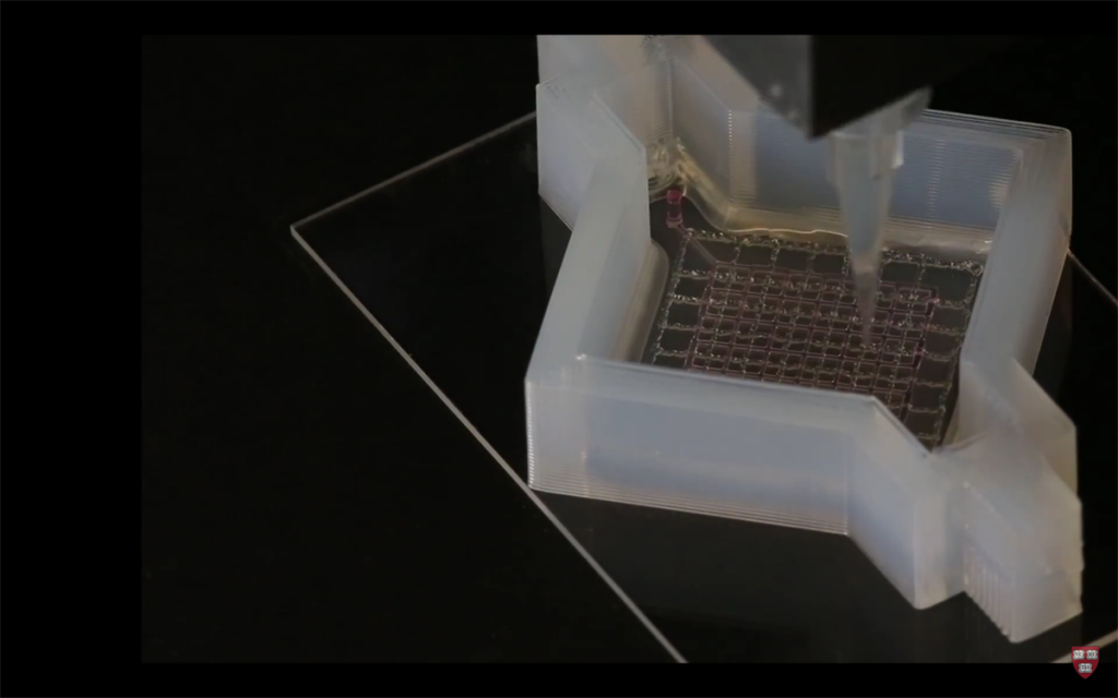 3D printed vasculature and tissue from Harvard silicone