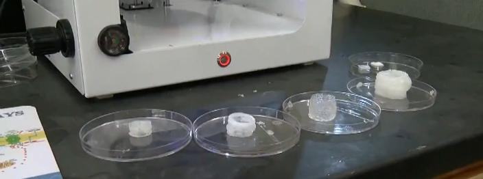 3DbioprintDU2