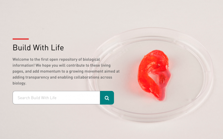 biobots-build-with-life