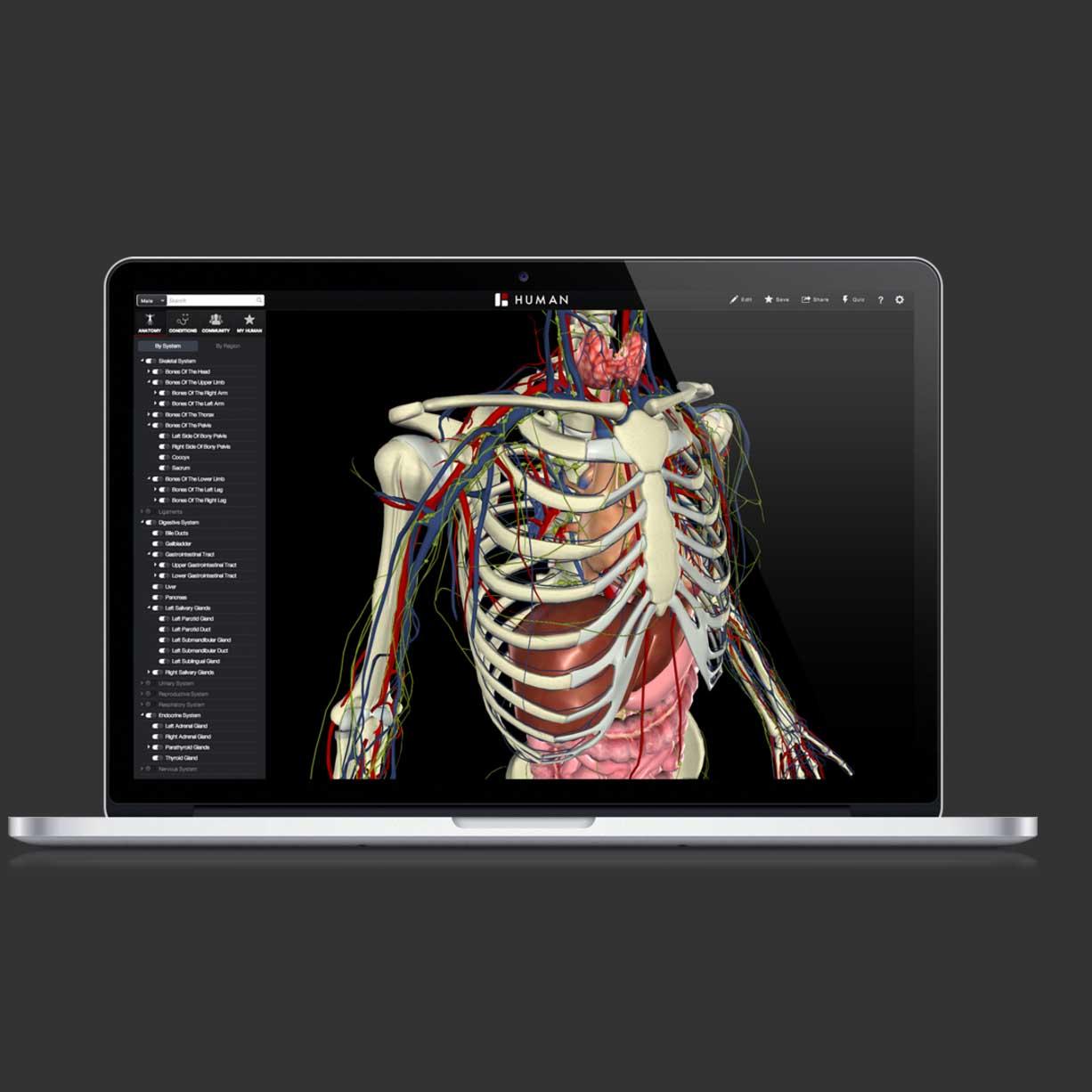 biodigital4