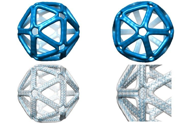 DNA Origami poised to be as simple as 3D printing - 3D ... - photo#21