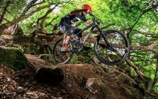 3D Printed Titanium Mountain Bikes