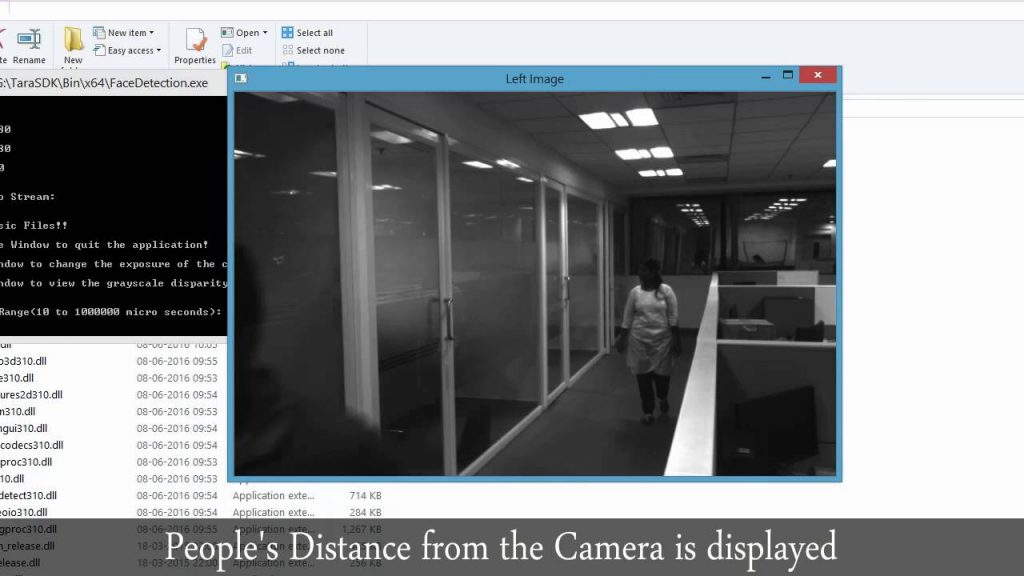 Large area scanning and distance measurement with Tara