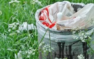 Carbios making green plastics a reality