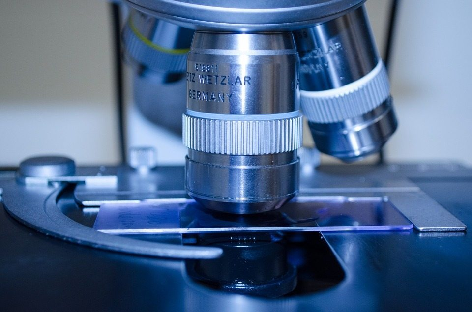Microscopes and cell cultures are easier to manage and more humane than animal testing