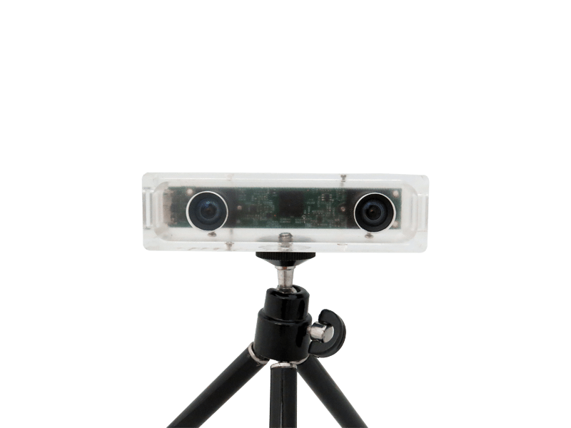 $199 stereo camera: low budget double vision