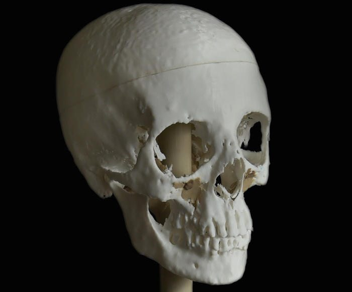 3d printed egyptian skull
