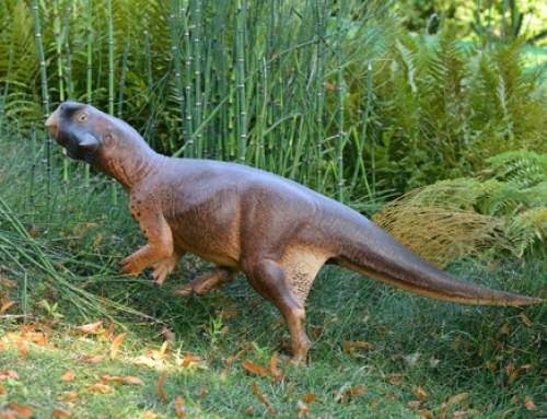 Researchers use 3D models to define the habitat of Psittacosaurus
