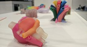 3DPI reporting from the heart of Formnext 2016. Image shows full color 3D printed anatomical hearts by Stratasys. Photo via: Michael Petch