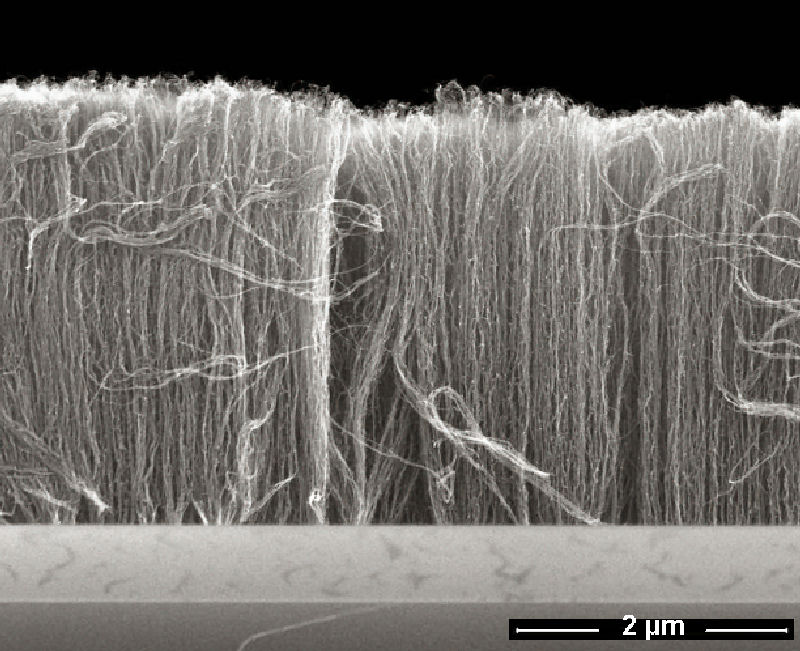 Nanotubes aligned. Image via Fraunhofer-Gesellschaft