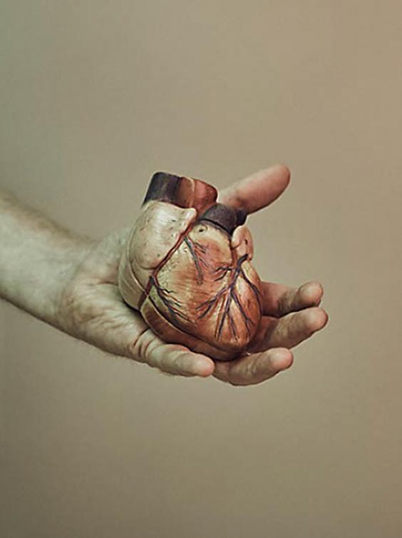 The 3D heart model Golesworthy proudly displays. Image via The Independent