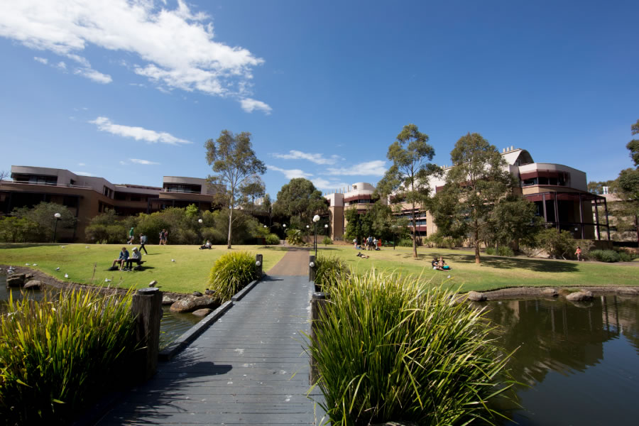 The campus at New South Wales' University of Wollongong