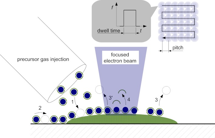 An illustration of the FEBID process. Numbered figures show injected (1) gas particles spreading (2) and releasing substances (3) from a controlled surface, and metal-linked atoms (4). Image via: Beilstein J Nanotechnol. 2012; 3: 597–619.