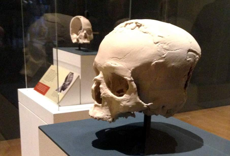 The first and second 3D printed reconstructions of the Jericho skull. Photo by Beau Jackson for 3D Printing Industry.