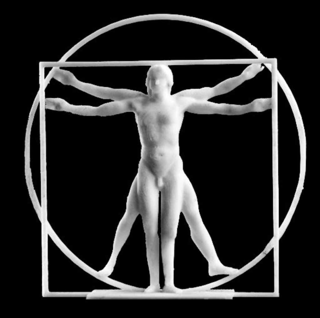 3D printed Vitruvian Man. Photo via: Scan the World