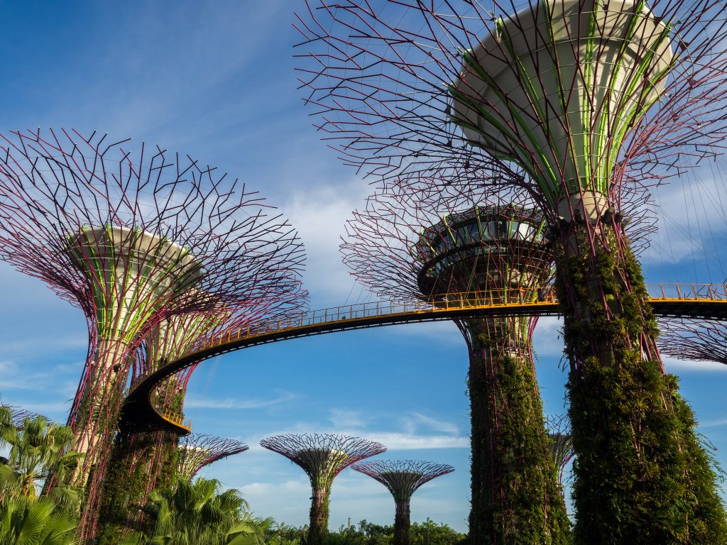 Singapore's metal Supertrees technologically support the city's natural ecosystem Photo by: Tatsuya Fukata on Flickr