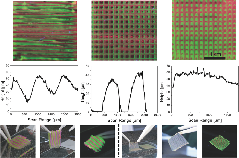 Details of the simple (left) 3D printed LED coating, and the micro patterned lattice structure (center and left) Figure via: Costa et al. at FAU