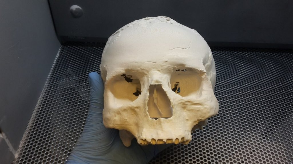 One of the 3D printed Jericho skulls shortly after printed. Photo via: Steven Dey, ThinkSee3D on Twitter