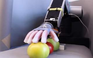 Gentle Bot. Screenshot from Sciene Magazine's video.