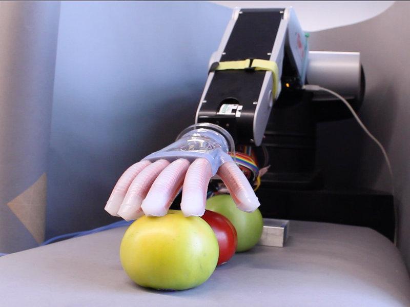 Gentle Bot. Screenshot from Science Magazine's video.
