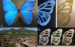 University of Colorado research into 3D printing in color uses photonic crystals.