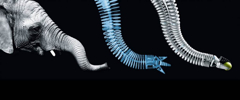 Biomimetic inspired design in this bionic soft handling device. A robotic concept by Festo.