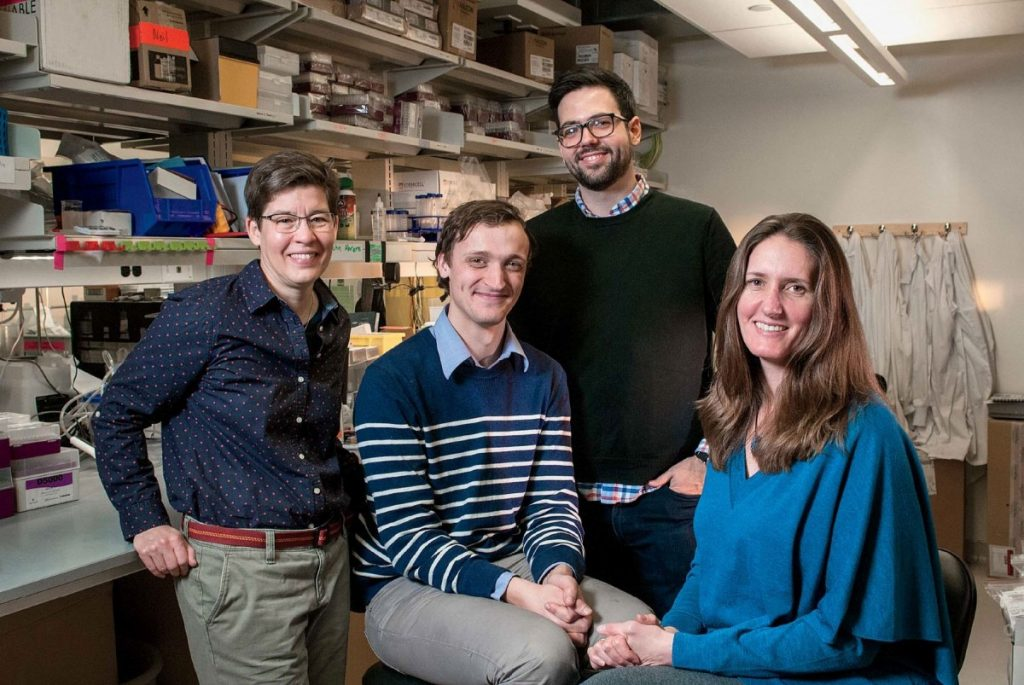 Jennifer Lewis (far left) and her 3D bioprinting team at Harvard. Photo by Jim Harrison