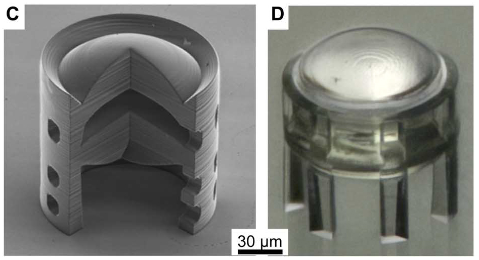 C shows an SEM image of a single lens & D a Light microscope image the same lens. Figure via Simon Thiele, Kathrin Arzenbacher, Timo Gissibl, Harald Giessen & Alois M. Herkommer