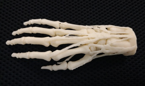 A modle used to understand the bone structure of the hand. 3D print on a desktop Mojo. Photo via Stratasys