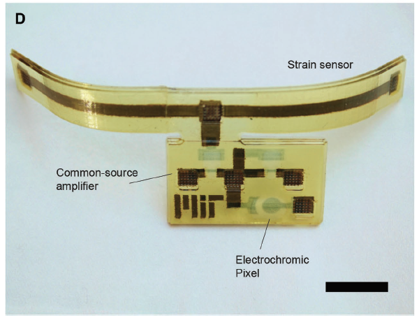 "The finished device, with color changing ""electrochromic pixel"". Image via Subramanian Sundaram et al."