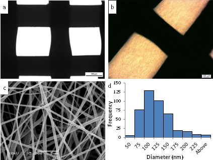 (a) shows the bare structure of 3D printed PCL. (b) shows an electrospun fiber on top of PCL. (c) the electrospun structure of PLGA. Figure via Natasha Maurmann et al.