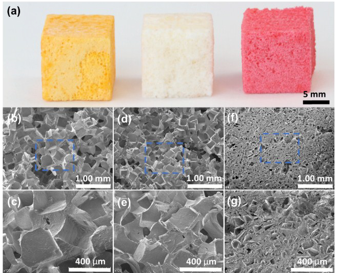 From left to right; cubes 3D printed in extra-fine PEGDA, Standard Clear and Spot-E Ink with salt leaching, and their corresponding pore structures under SEM imaging. Figure via X. Mu, T. Bertron, C. Dunn, H. Qiao, J. Wu, Z. Zhao, C. Saldanaa and H. J. Qi