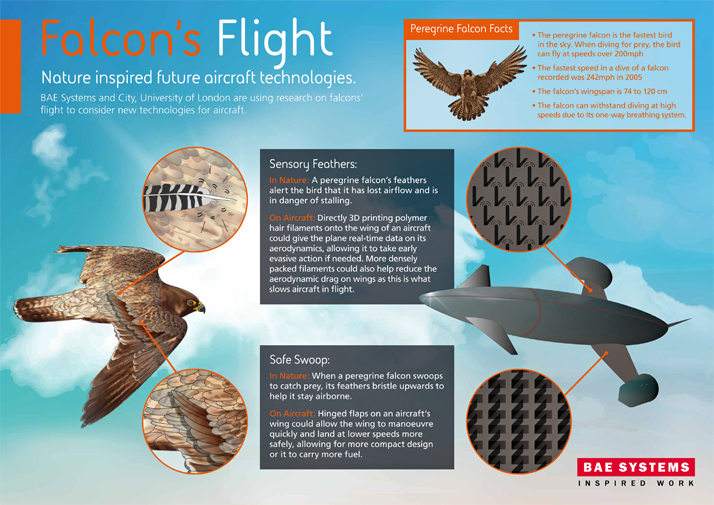 """Falcon's Flight"" concept research. Image via BAE Systems"