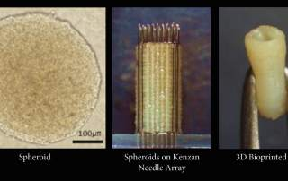 The Kenzan method. Image via Cyfuse Biomedical.