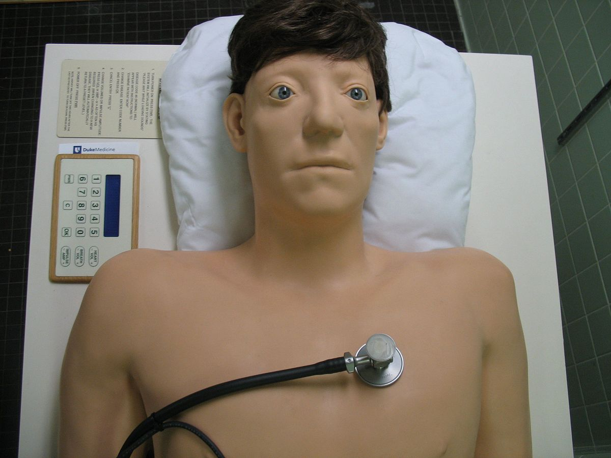 A more conventional medical simulation, the Harvey mannequin. Photo via Wikipedia user Gene Hobbs.