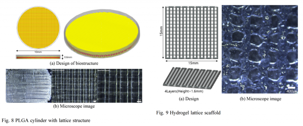 Experimental results demonstrating a PLGA cylinder and hydrogel lattice scaffold. Image via Korean Society for Precision Engineering and Springer-Verlag Berlin Heidelberg