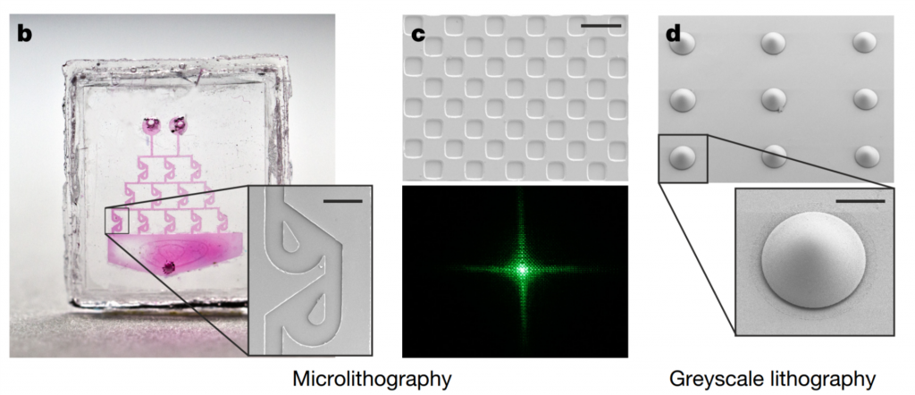 Generating surface reliefs to create an array of microlenses. Image via Nature.