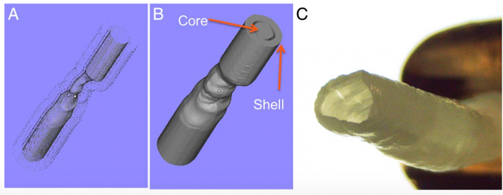 Digital model (left) and the hydrogel model of a ICAD artery. Figure via Chueh, Ju-Yu, et al.