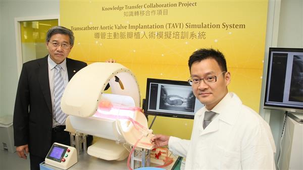 The Transcatheter Aortic Valve Implantation (TAVI) simulation system.