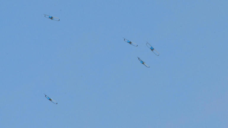 Some of the Pedrix drones in flight. Photo via CBS News.